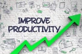 Productivity တက်အောင်ဘယ်လိုပြုမူ ကျင့်သုံးနေထိုင်သင့်လဲ
